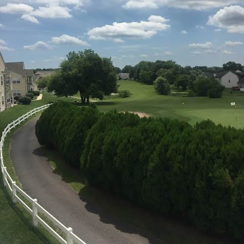 Apartments In Limerick Pa